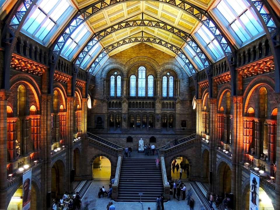Museo di Storia Naturale Londra